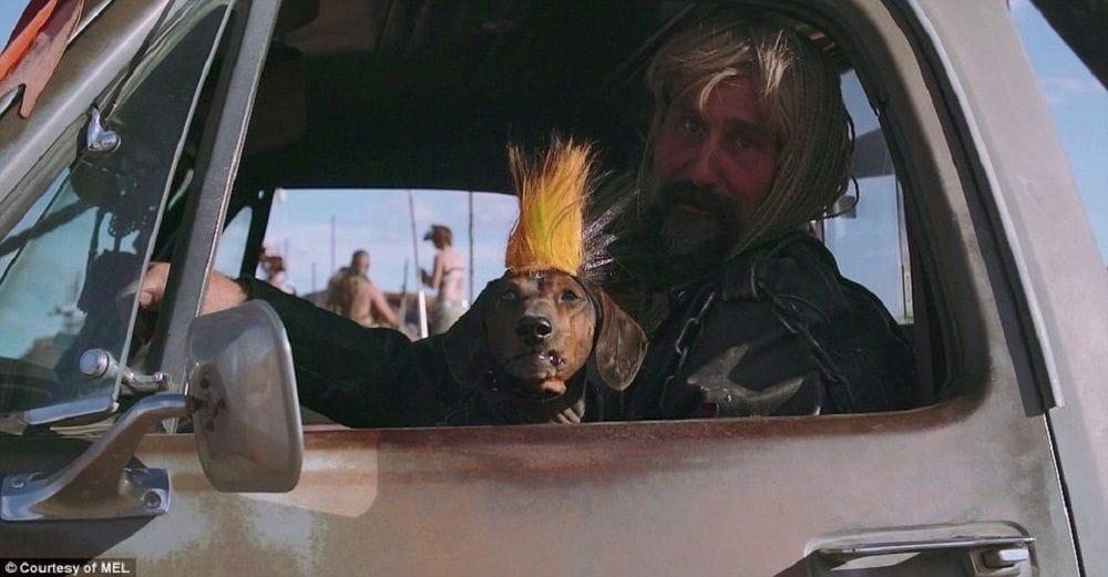 Φωτογραφία σκύλου με τον ιδιοκτήτη στο εσωτερικό αυτοκινήτου από το Wasteland Weekend